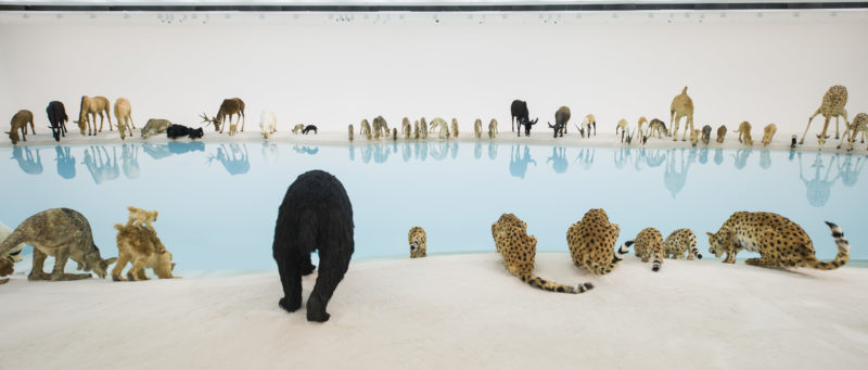 Cai Guo-Qiang, Heritage, 2013. 99 life-sized replicas of animals, water, sand, drip mechanism; installed dimensions variable (detail)