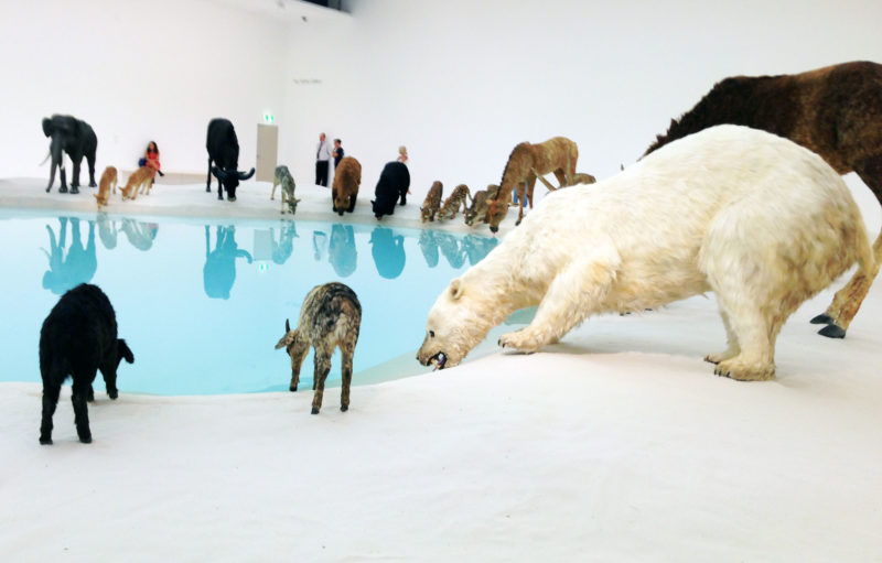Cai Guo-Qiang, Heritage, 2013. 99 life-sized replicas of animals, water, sand, drip mechanism; installed dimensions variable (detail) - polar bear