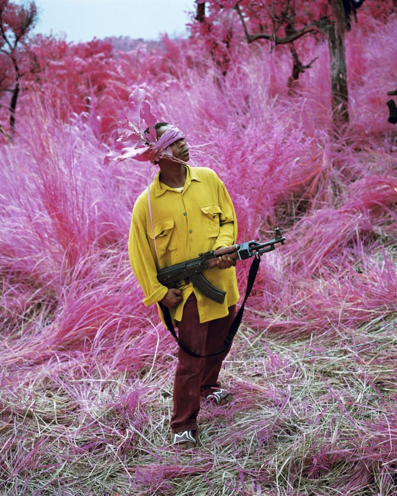 Richard Mosse – Birdland, Fizi, South Kivu, 2012