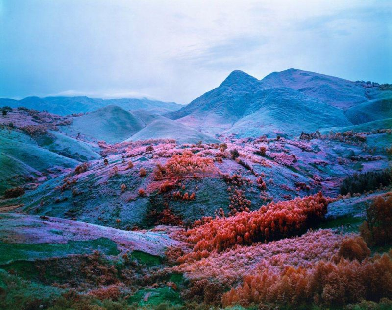 Richard Mosse - At Home he is a Tourist, 2012, Courtesy of The Vinyl Factory