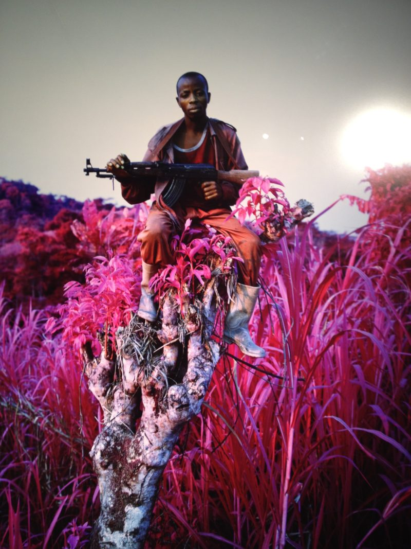 Richard Mosse - Higher ground, 2012, C photograph, 227.0 × 185.0 cm, Courtesy of the artist and Jack Shainman Gallery, New York