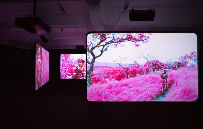 Richard Mosse - Installation view, The Enclave, 2012–2013. 16 mm infrared film transferred to HD video. Produced in eastern Democratic Republic of Congo. Courtesy of Jack Shainman Gallery, New York.