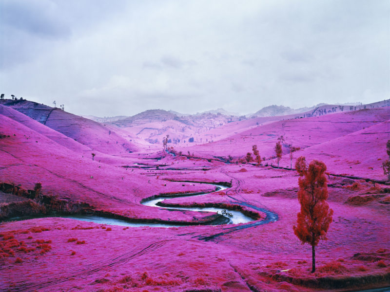Richard Mosse - Platon, 2012. Digital c-print. © Richard Mosse. Courtesy of the artist and Jack Shainman Gallery, New York.