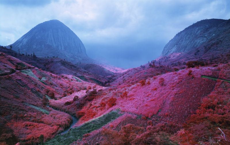 Richard Mosse - Poison Glen, South Kivu, Eastern Congo, 2012 Digital C print, 50 x 80 inches, Courtesy of Jack Shainman Gallery