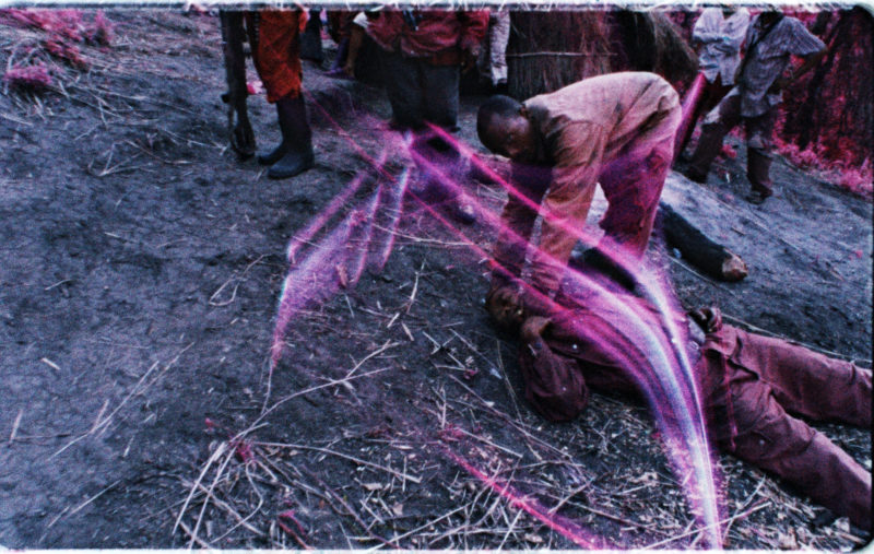 Richard Mosse - The Enclave, 2012-13, eastern Democratic Republic of Congo, 16mm infrared film transferred to HD video