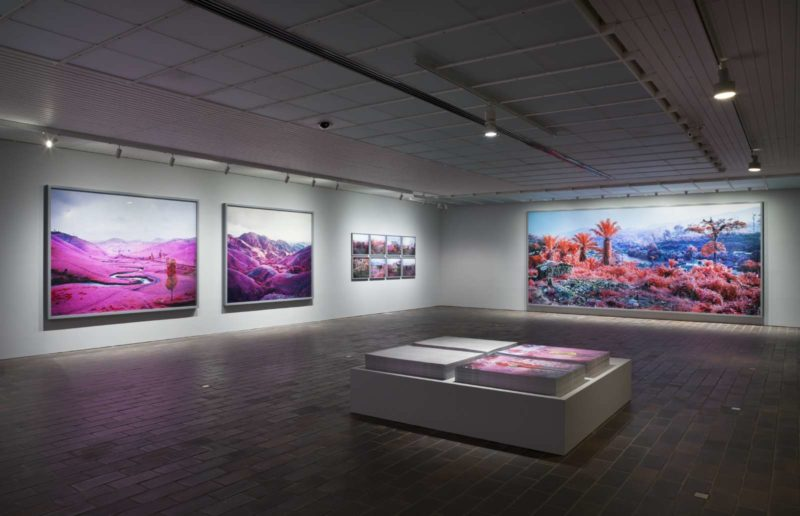 Richard Mosse - The Enclave, Louisiana Museum of Modern Art, Denmark, May 2 - 25, 2015