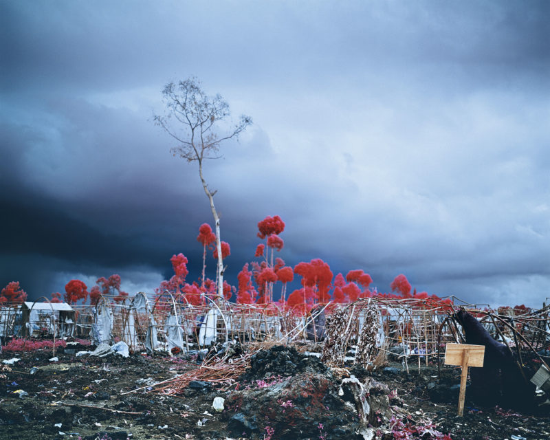Richard Mosse - Tombstone Blues, 2012