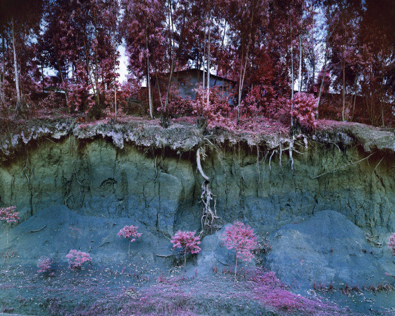 Richard Mosse - Untitled Transient, 2012. Digital c-print. Courtesy of the artist and Jack Shainman Gallery, New York.