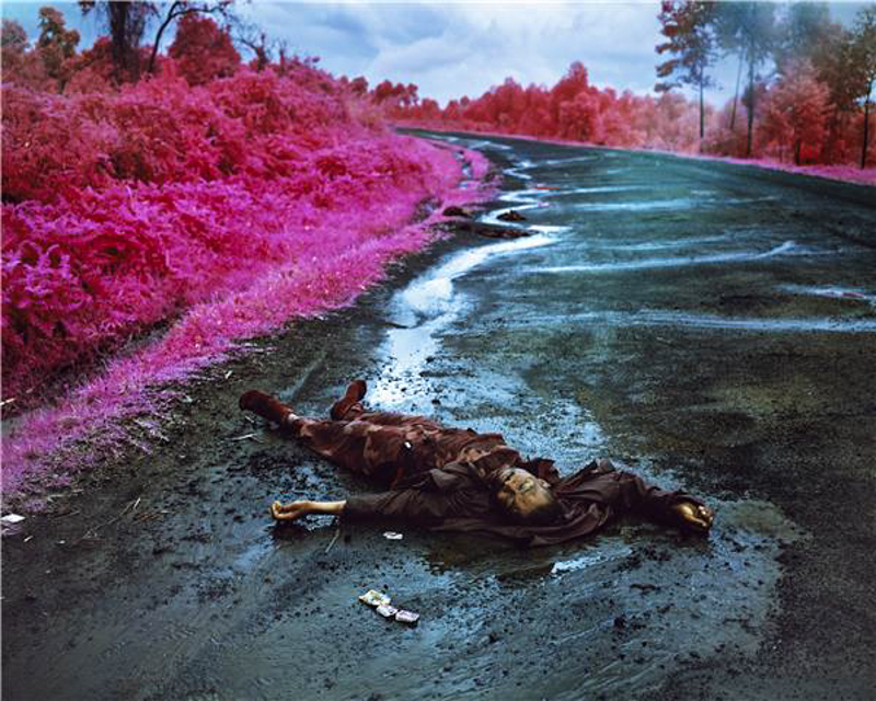 Richard Mosse - Wave of Mutilation, 2012