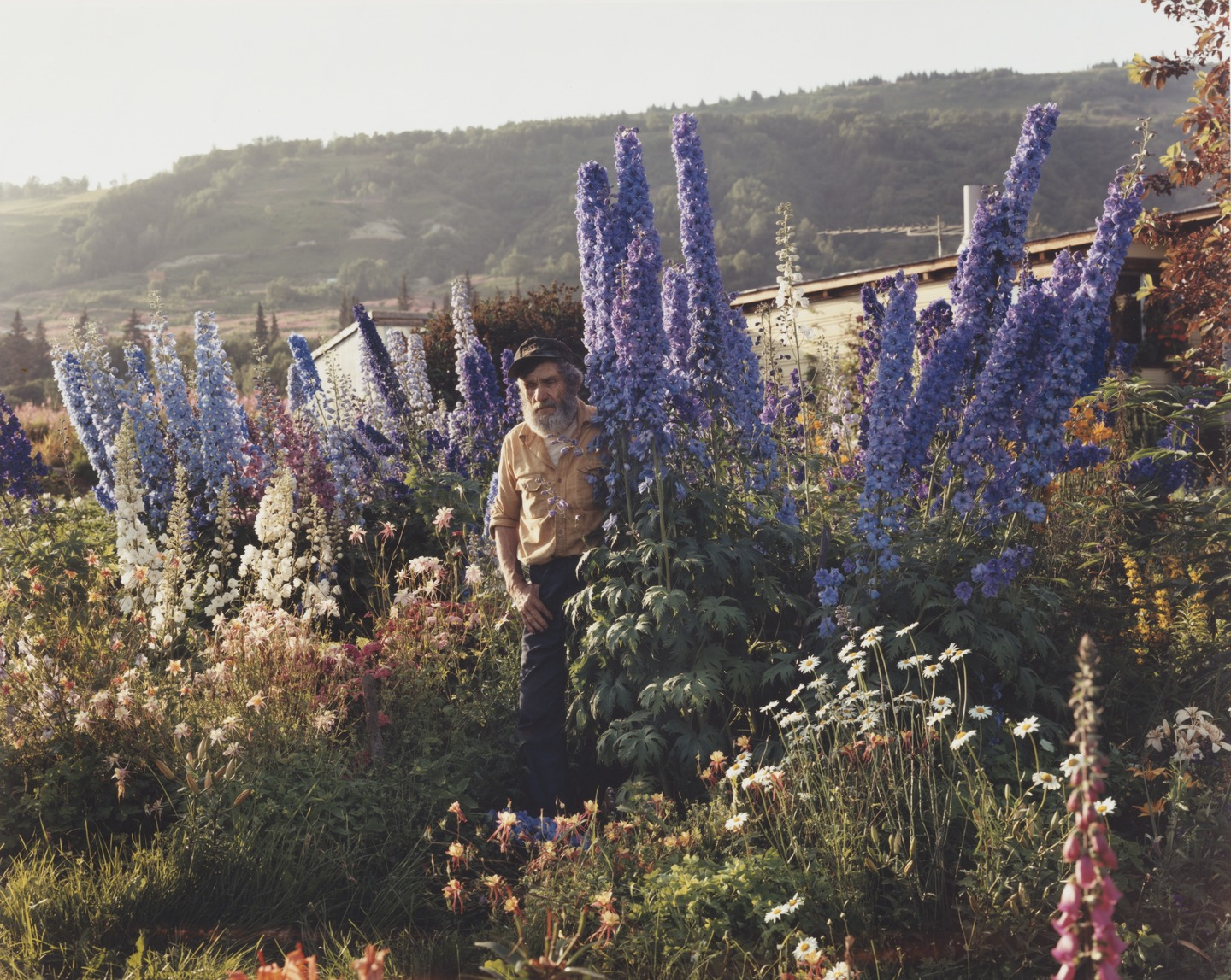 Joel Sternfeld - American Prospects, A Blind Man in His Garden, Homer, Alaska July 1984