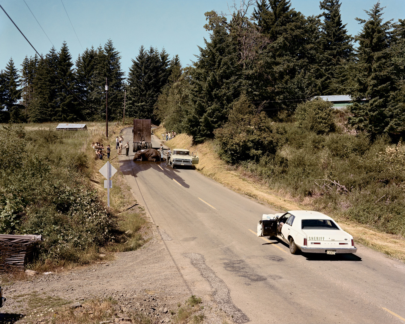 Image result for joel sternfeld american prospects