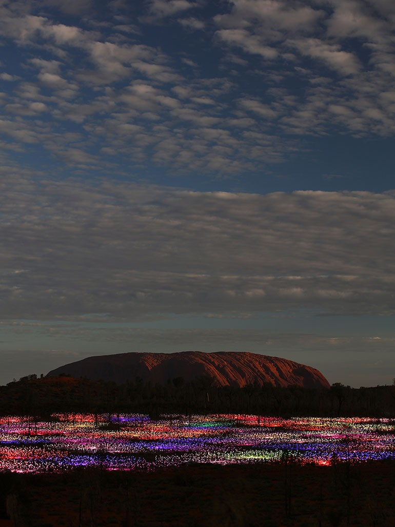 Why should you visit Bruce Munro's Fields of Lights?