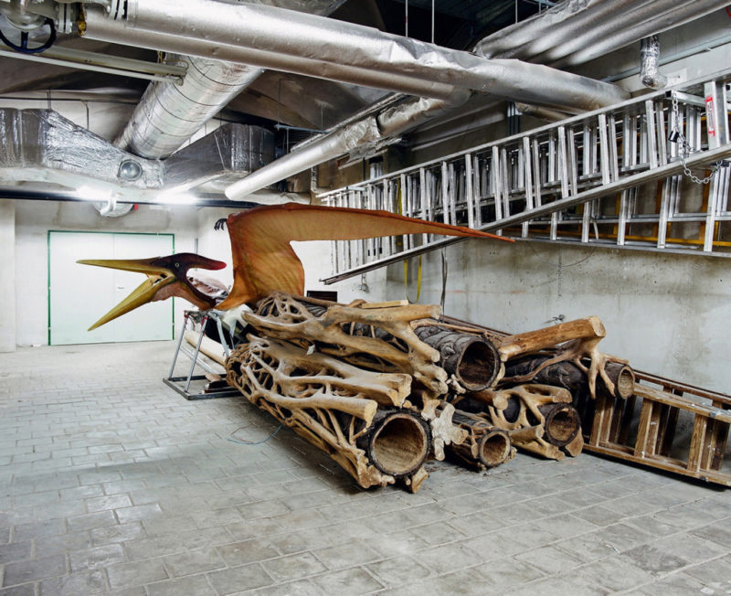 Klaus Pichler - Pteranodon at the Museum of Natural History, Vienna, 2010, from Skeletons in the Closet