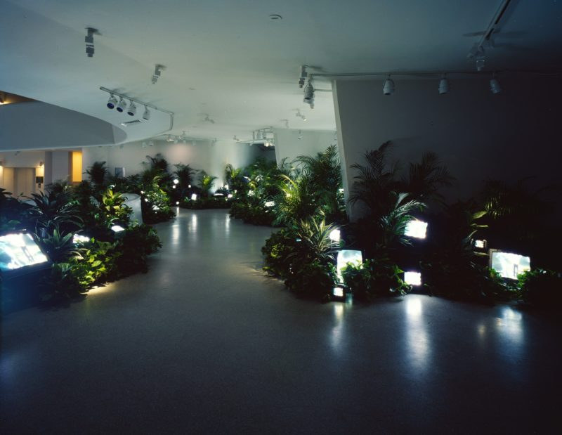 Nam June Paik - TV Garden, 1974 (2000 version), video installation with color television sets and live plants, dimensions vary with installation, Solomon R. Guggenheim Museum, New York 2