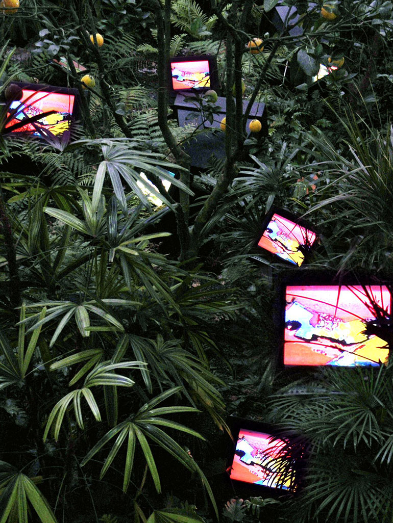 Why are these 40 TVs installed between tropical plants?