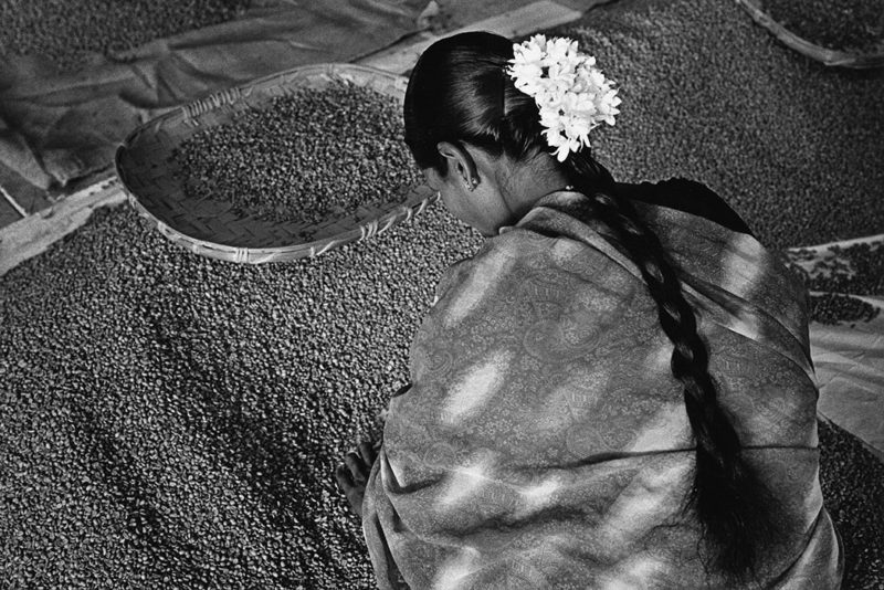 Sebastião Salgado - Woman sorting coffee out in Karnataka, India, 2003