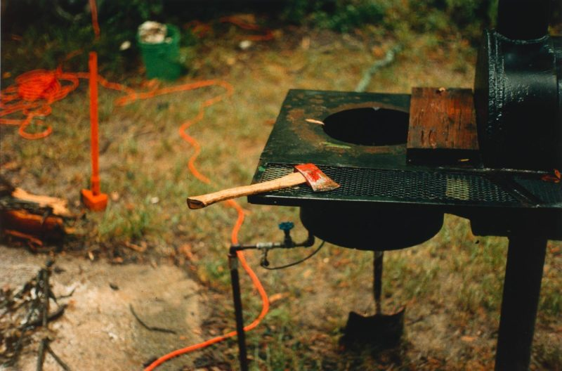 William Eggleston – The Democratic Forest.