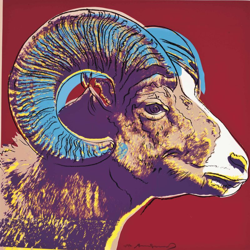 Andy Warhol – Bighorn Ram, 1983, from Endangered Species, screenprint, 96,5 x 96,2 cm (38 x 37 7/8 in.)