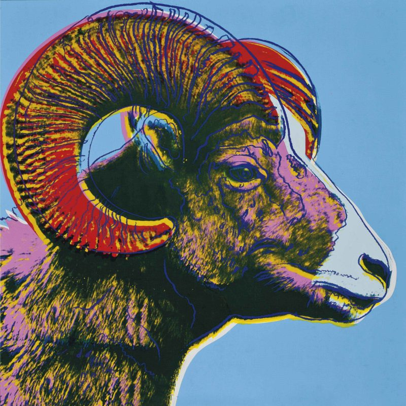 Andy Warhol – Bighorn Ram, 1983, from Endangered Species, synthetic polymer and silkscreen inks on canvas, 152.4 x 152.4 cm (60 x 60 in.)