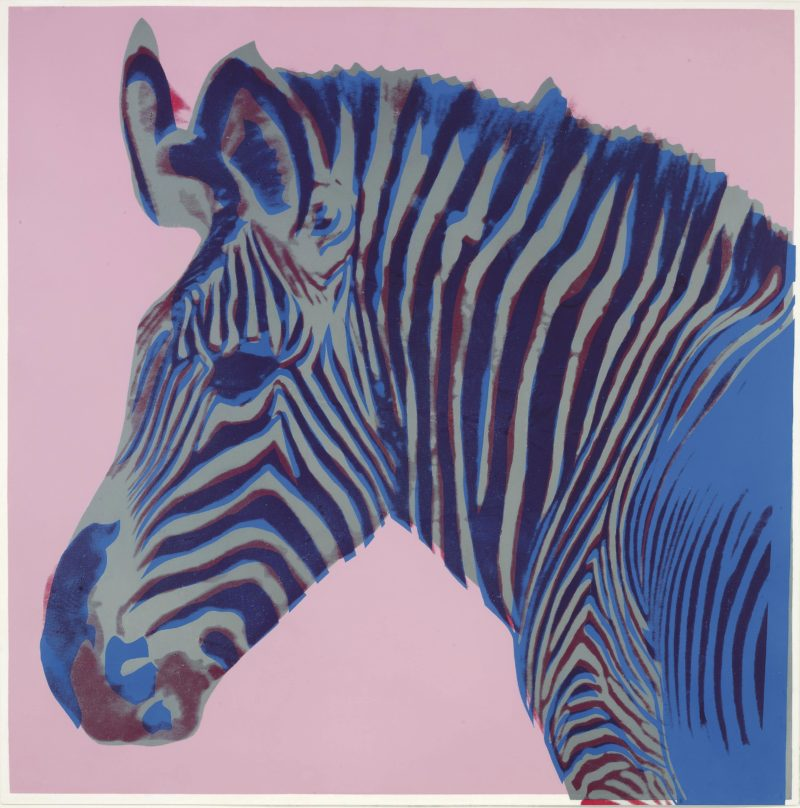 Andy Warhol – Grevy's Zebra, 1983, from Endangered Species, screenprint, 96,5 x 96,2 cm (38 x 37 7/8 in.)