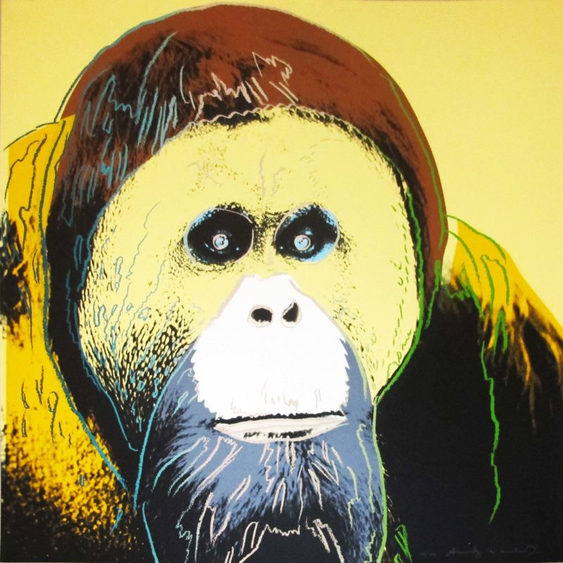 Andy Warhol – Orangutan, 1983, from Endangered Species, screenprint, 96,5 x 96,2 cm (38 x 37 7/8 in.)