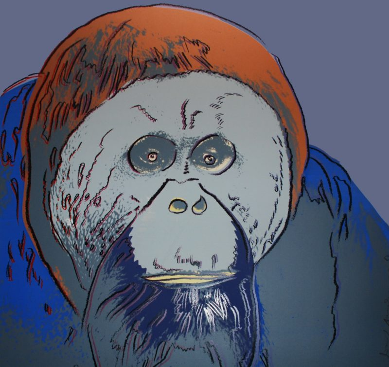 Andy Warhol – Orangutan, 1983, from Endangered Species, screenprint, 96,5 x 96,2 cm (38 x 37 7/8 in.), proof