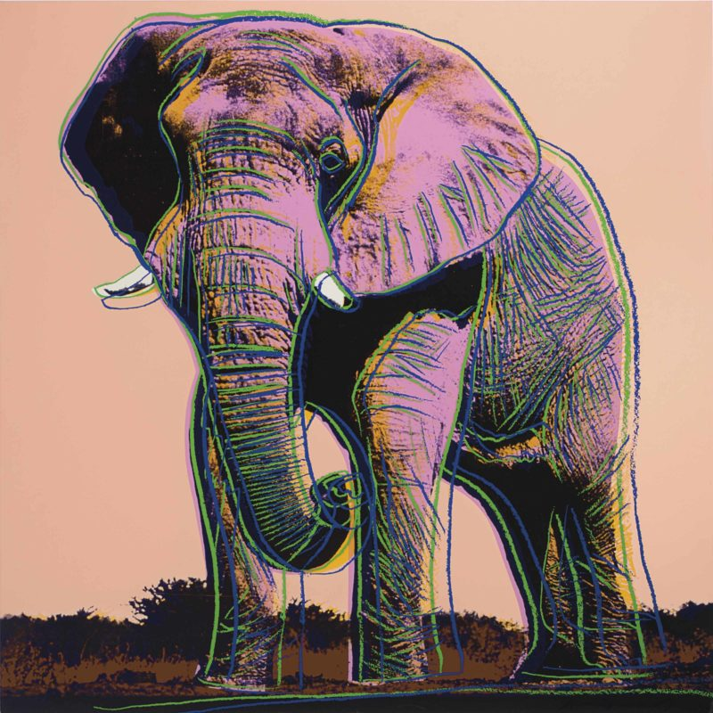 Andy Warhol - African Elephant, 1983, from Endangered Species, screenprint, 96,5 x 96,2 cm (38 x 37 7/8 in.)