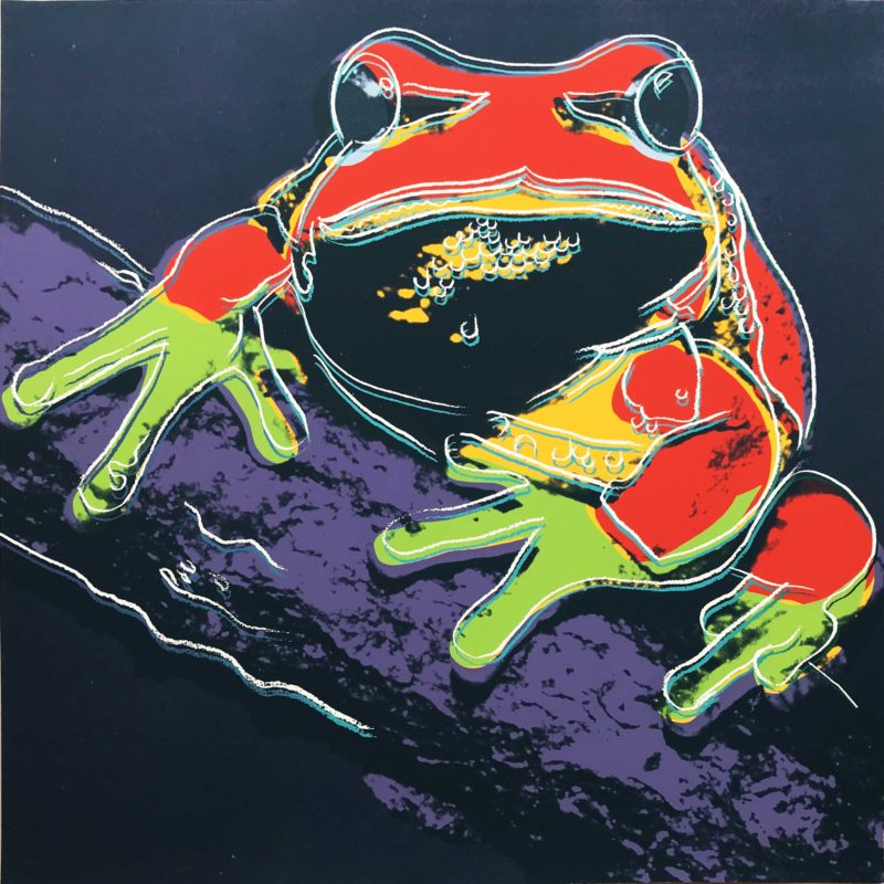 Andy Warhol - Pine Barrens Tree Frog, 1983, screenprint, 96,5 x 96,2 cm (38 x 37 7/8 in.)