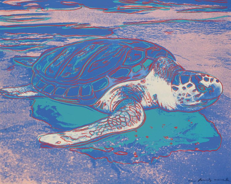 Andy Warhol - Turtle, 1985, 77,5 x 100 cm (31½ x 39 3/8 in.)