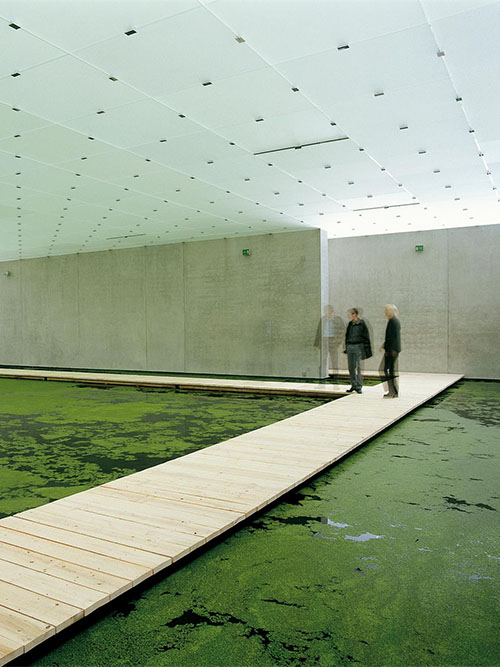 Olafur Eliasson & a pond in a museum - The Meditated Motion