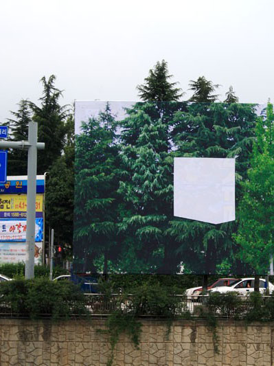 Optical illusion billboard by Hawaiian artist in South Korea