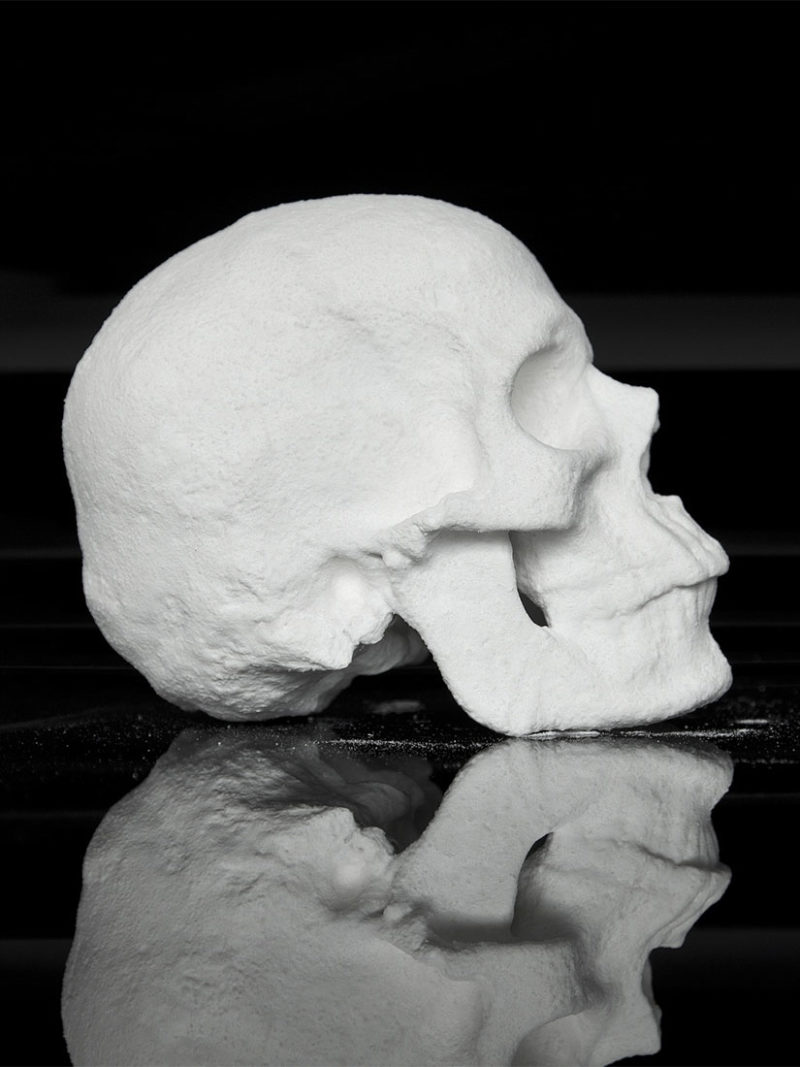 This skull is made out of cocaine - Diddo's Ecce Animal