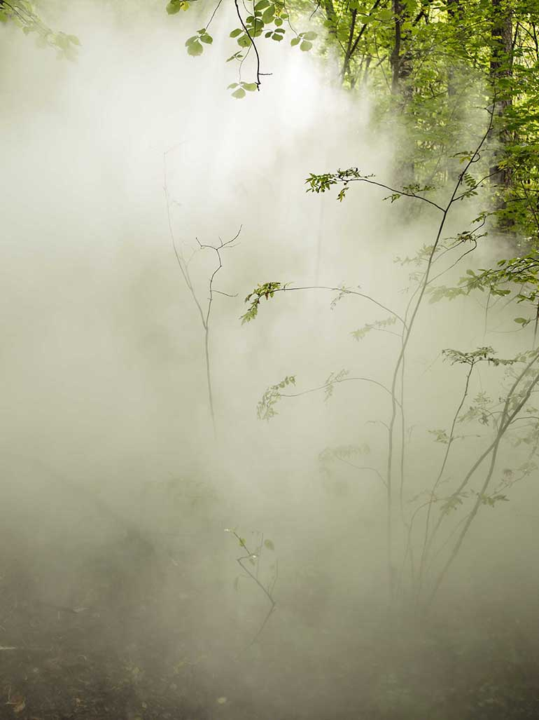 What are Fujiko Nakaya's fog sculptures all about?