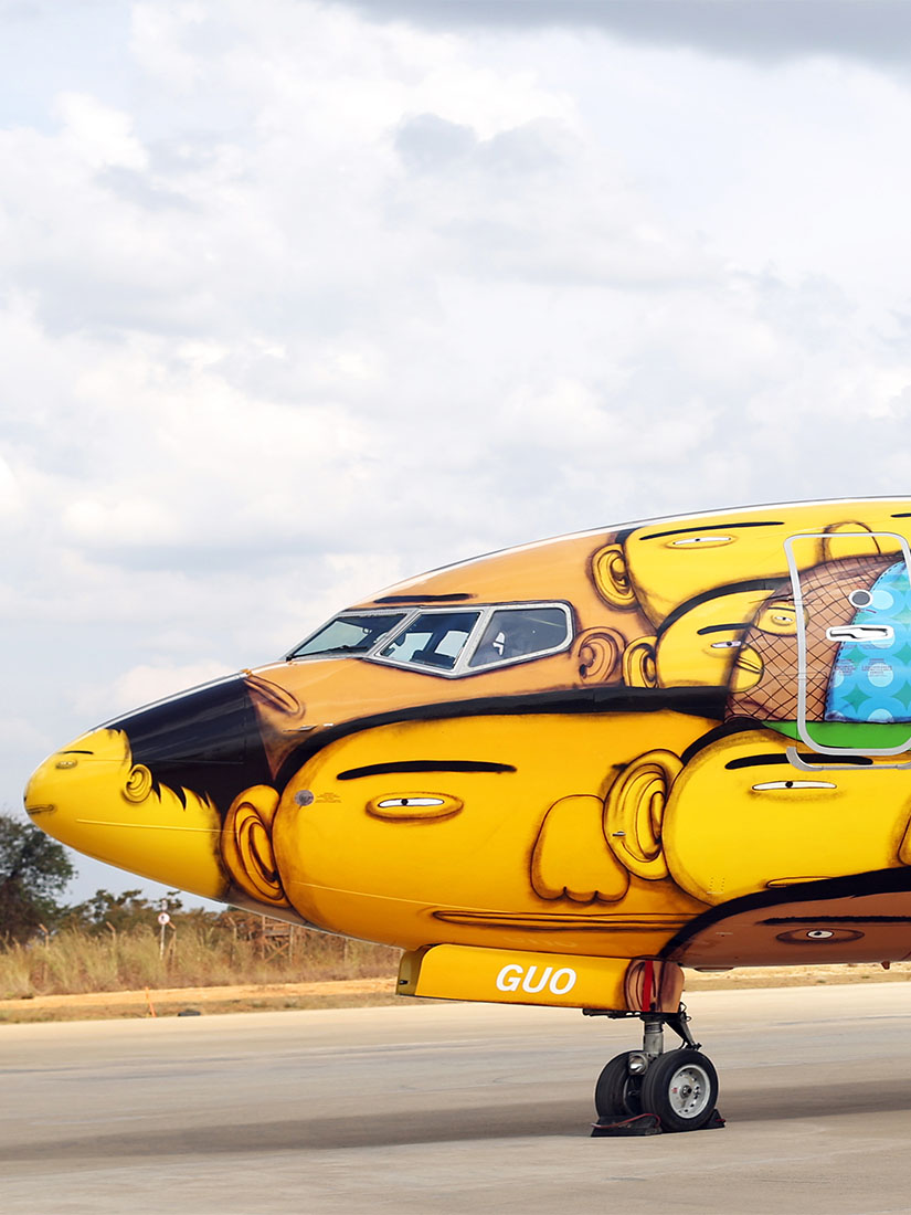 Os Gemeos painted this entire Boeing plane