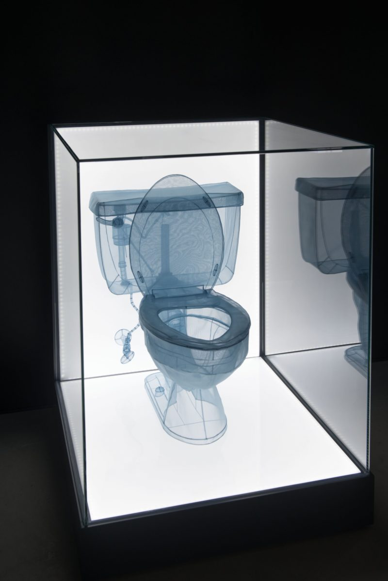 Do Ho Suh – Toilet, 2013, polyester fabric, stainless steel wire, display case, LED lighting, 34 x 150.1 x 76.5 cm (13.4 x 59.1 x 30.1 inches)