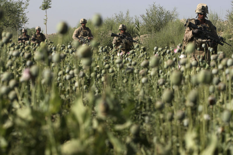 David Guttenfelder – Afghanistan - U.S. Marines, from the 24th Marine Expeditionary Unit, pass by a poppy field