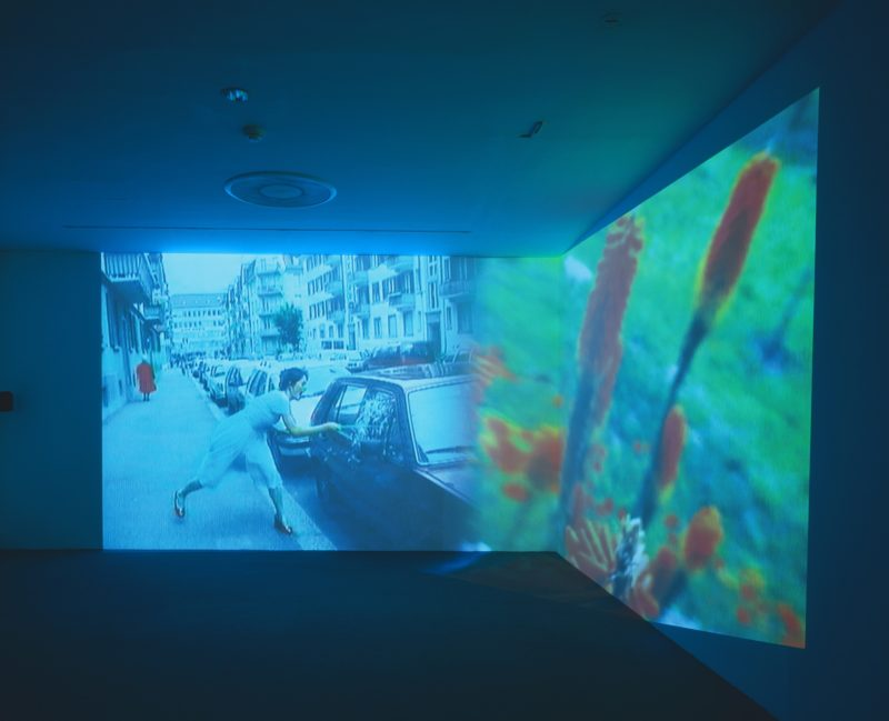 Pipilotti Rist - Ever Is Over All, 1997, audio video installation, Museum of Modern Art, New York, Aug 30, 2006 – Apr 9, 2007