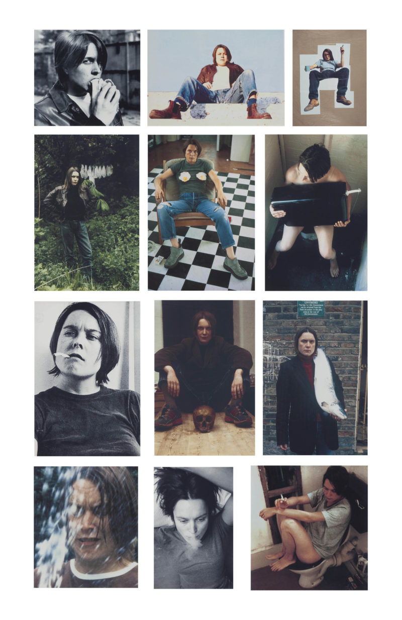 Sarah Lucas - Self Portraits overview