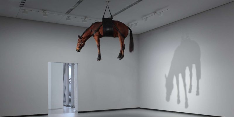Maurizio Cattelan – The Ballad of Trotsky, 1996, taxidermized horse, leather saddlery, rope, pulley Grandeur nature, 270 x 200 x 75 cm, Fondation Louis Vuitton