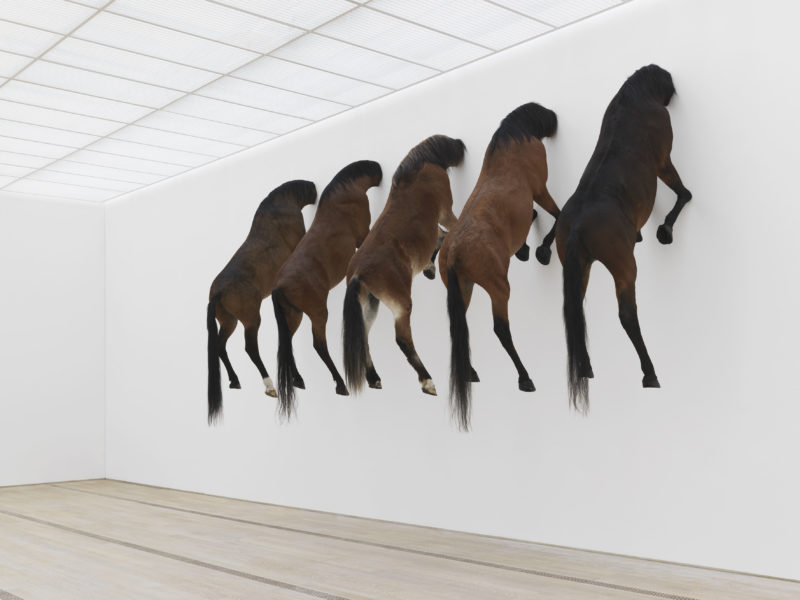 Maurizio Cattelan – Untitled, taxidermied horses, Fondation Beyeler, Serge Hasenböhler