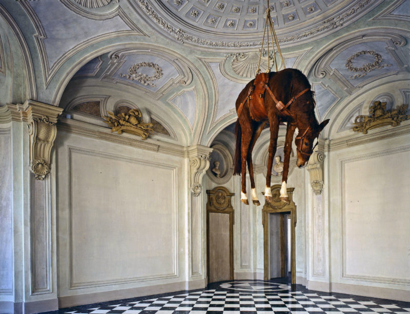 Maurizio Cattelan - The Ballad of Trotsky, 1996, taxidermized horse, leather saddlery, rope, pulley Grandeur nature, 270 x 200 x 75 cm