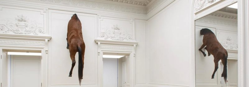 Maurizio Cattelan Untitled 2007 taxidermied horse 300 x 170 x 80 cm installation view Monnaie de Paris Germany 2016-2017 photo Zeno Zotti