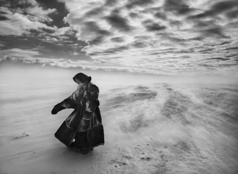 Sebastião Salgado - Woman on the Yamal Peninsula, Siberia, 2011