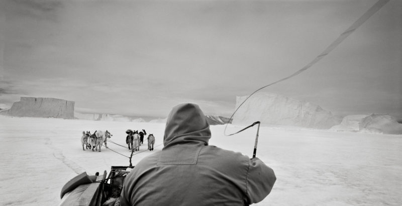 Ragnar Axelsson - Last Days of the Arctic - Hunter cracking his whip on his dog sled, Greenland