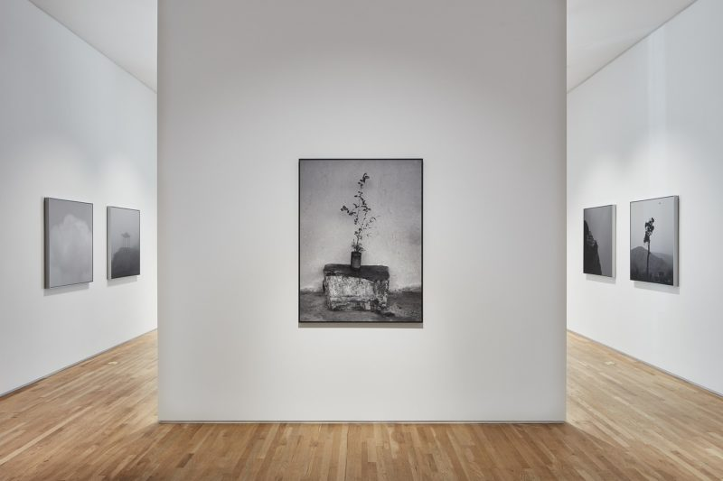 Hai Bo - Installation view, The Southern Series, Pace Gallery, Palo Alto, May 31–Jul 15, 2018