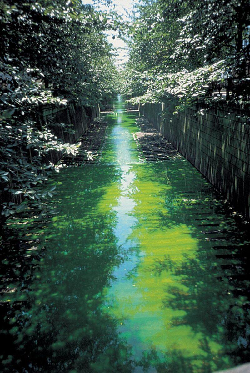 Olafur Eliasson – Green river, 1998, uranin, water, Tokyo, 2001