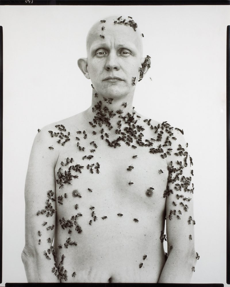 Richard Avedon - Ronald Fisher, Beekeeper, Davis, California, May 9, 1981, printed 1985