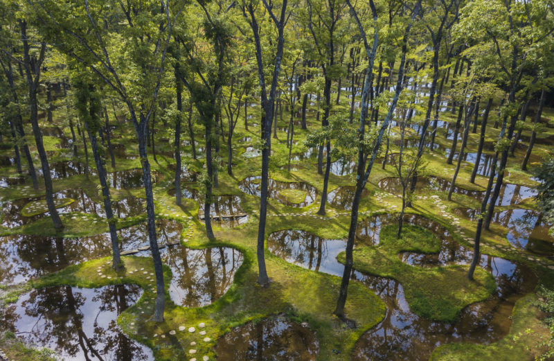 Junya Ishigami - Water Garden, 2018, Nasu Mountains, Tochigi Prefecture, Japan