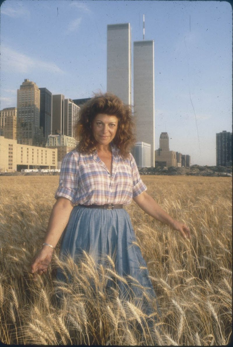 Agnes Denes - Wheatfield - A Confrontation, 1982, Battery Park Landfill, Downtown Manhattan