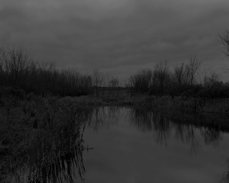 Dawoud Bey - Untitled #12 (The Marsh), from the series Night Coming Tenderly, Black, 2017